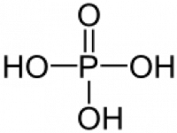 "Acide phosphorique, structure. (fichier Commons : ""Phosphorsäure_-_Phosphoric_acid.svg"") (domaine public) Neurotiker, 2007"