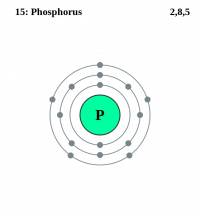 "Phosphore, structure électronique. (fichier Commons : ""Electron_shell_015_Phosphorus.svg"") - licence CC-BY-SA 2.0 (https://creativecommons.org/licenses/by-sa/2.0/) Pumbaa (dérivé de Greg Robson), 2006"