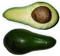 "Avocat. (fichier Commons : ""Persea_americana_2.jpg"") - licence CC-BY-SA 3.0 (https://creativecommons.org/licenses/by-sa/3.0/deed.en) Finke Marco, 2006"