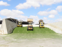 "Ensilage compacté par des camions, Israël. (fichier Commons : ""Loaders_compacting_silage,_Revivim_2007"") - licence CC-BY-SA 3.0 (https://creativecommons.org/licenses/by-sa/3.0/) Felagund, 2007"