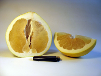 "Pamplemousse (anglais pomelo). (fichier Commons : ""800px-Pomelo_Open_02"") - licence CC-BY-SA 2.0 et 3.0 (https://creativecommons.org/licenses/by-sa/3.0/deed.en) Fb78, 2006"