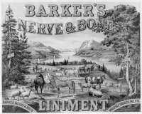 "Liniment. Animaux d'élevage.  (fichier Wikimedia Commons : ""Barker's_nerve_&_bone_liniment_LCCN2005694425"") (domaine public) Popular Graphic Arts, 1883"