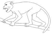 "<em>Aegyptopithecus.</em> (fichier Commons : ""AegptecusZICA-02"") - licence CC-BY-SA 3.0 (https://creativecommons.org/licenses/by-sa/3.0/) Zica Mateus, 2012"