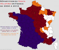 "Frelon asiatique : répartition géographique en France  entre 2004 et 2016. (fich. Commons : ""Répartition_du_frelon_asiatique_en_France_de_2004_à_2016"") - licence CC-BY-SA 4.0 (https://creativecommons.org/licenses/by-sa/4.0//deed.fr) Clame Reporter, 2017"