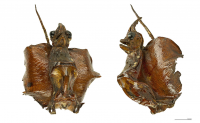 "Jenny haniver au Muséum de Toulouse. (fichier Wikimedia Commons : ""Jenny_Haniver_MHNT"") - licence CC-BY-SA 4.0 (https://creativecommons.org/licenses/by-sa/4.0//deed.fr) Descouens Didier, 2012"