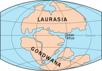 "Trias, continents Gondwana et Laurasia et océan Téthys. (fichier Commons : ""Laurasia-Gondwana_fr"") - licence CC-BY-SA 3.0 (https://creativecommons.org/licenses/by-sa/3.0/) Rochon Benoit, USGS, 2007"