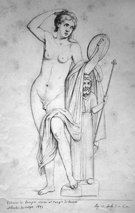 """Résultat de recherche d'images pour """"hermaphrodite"""""""